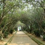 The beautiful walkway inside An Hien Garden House