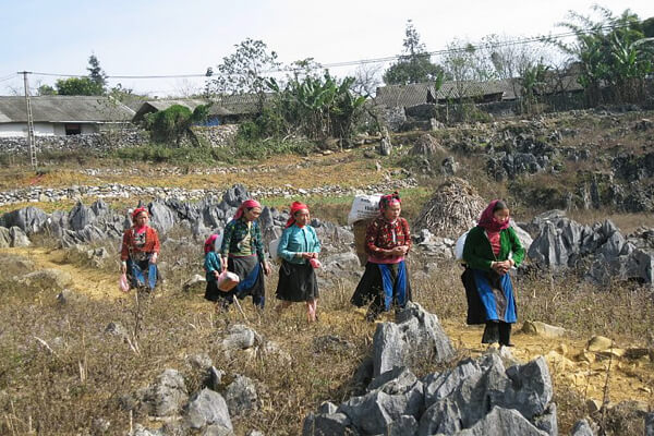 Dong Van Rokey Plateau, Tours to Vietnam