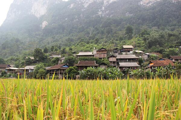 Pac Ngoi Village, Tour to Vietnam