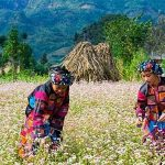 Ethnic Group in the nort, Vietnam tour vacations