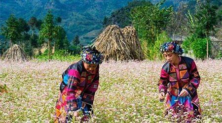 Ethnic Identity of Northwest Vietnam – 6 Days