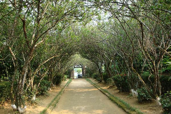 An Hien Garden House in Hue, Vietnam Travel Vacations