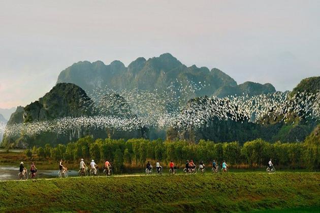 thung nham bird valley ninh binh, Vietnam Packages