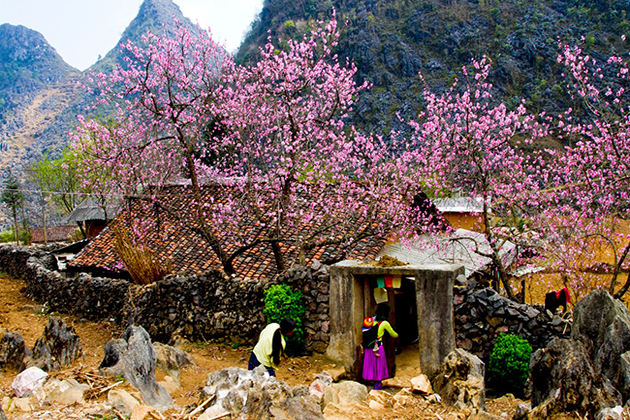 Amazing Ha Giang Tour – 5 Days