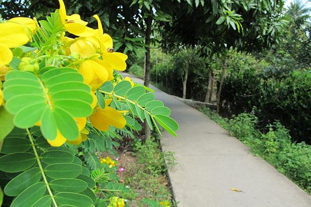 Mekong delta village tour