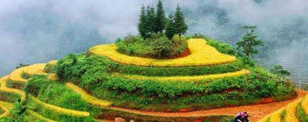 Hidden Treasures of the North Vietnam – 7 Days