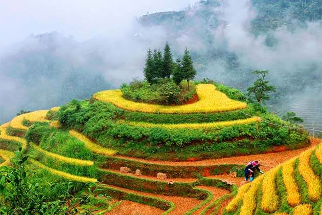 Hoang Su Phi, Vietnam Adventure Trips