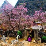 Meo Vac, Tour adventure in Vietnam