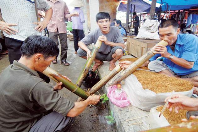 Thuoc Lao in Vietnam, Vietnam Tours
