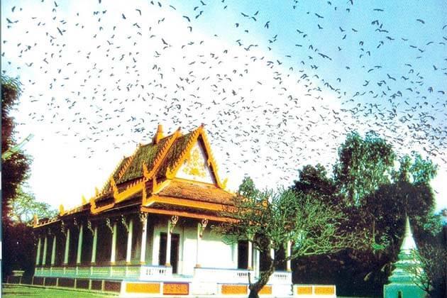 Bat Pagoda (Mahatup Pagoda), Vietnam holidays