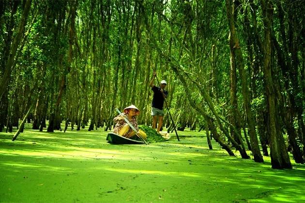 Tra Su Cajuput Forest, Vietnam tours